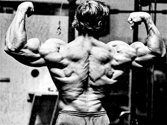 arnold-schwarzeneggers-mammoth-chest-and-back-workout_graphics_arnold-series-3